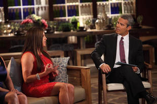 Teresa Giudice Sings and More WTF Moments From The Real Housewives of New Jersey Season 4 Reunion, Part 2