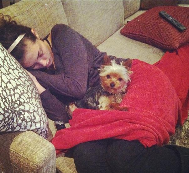 Phoebe Tonkin dog