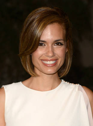 Torrey DeVitto army wives