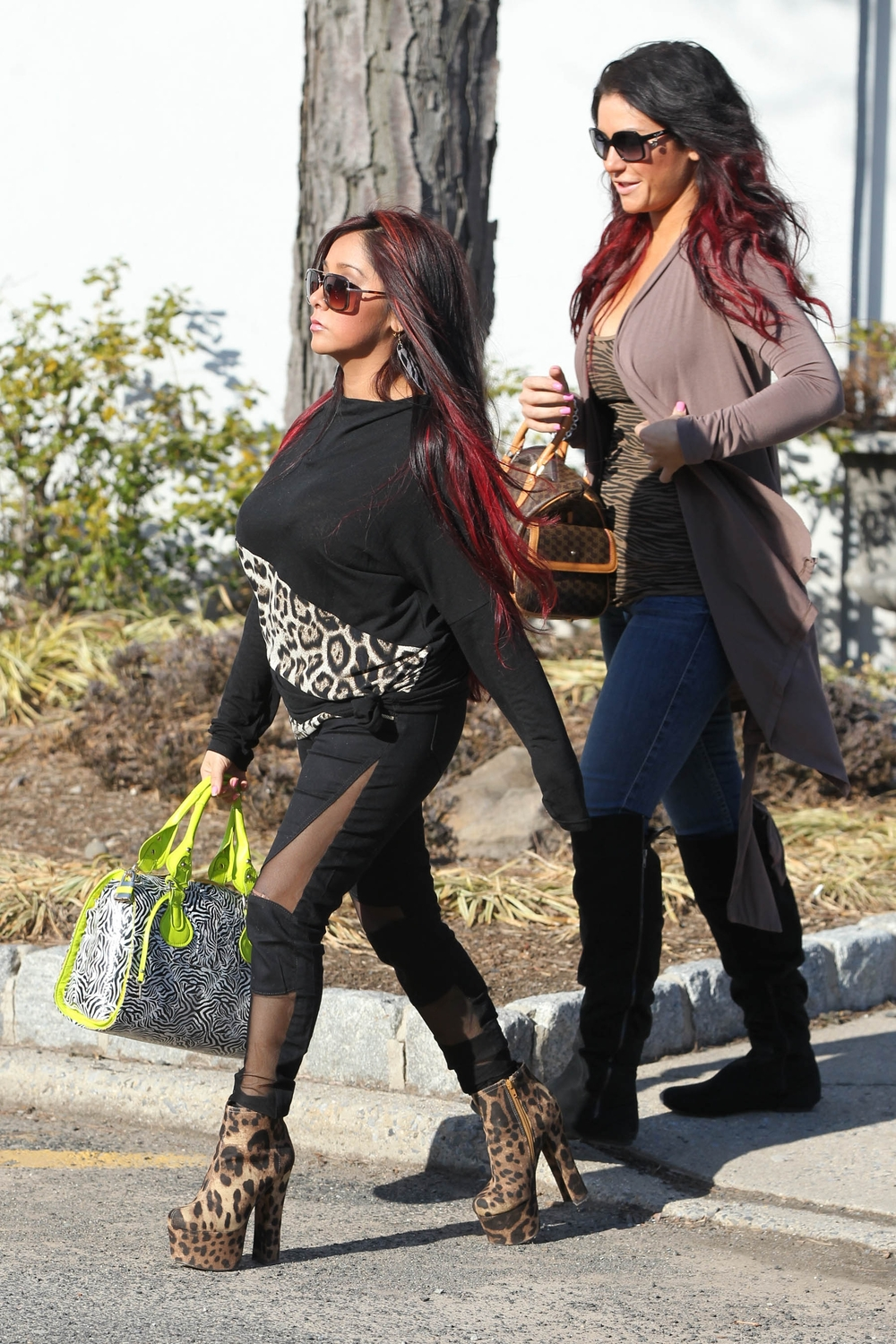 If Snooki Is Pregnant Does This Mean There Won't Be a Jersey Shore Season 6?
