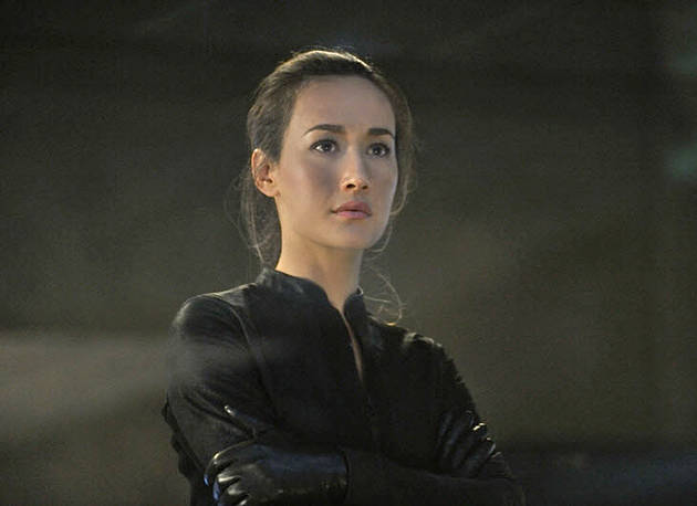 Nikita Season 2 Finale Spoilers! Maggie Q Teases Death and Set-up For Nikita Season 3