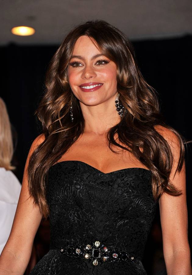 Sofia Vergara Makes More Than Any Other TV Actress: How Much Did She Earn in 2012?