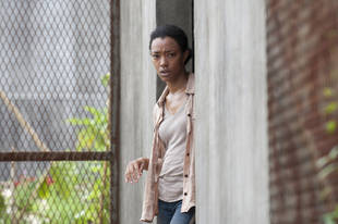 "The Walking Dead Season 4 Episode 3 Recap: Whoa, Killer! Who's Sick Now? Who Got Hammered in ""Isolation""?"