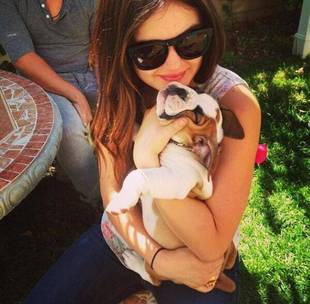 Lucy Hale Welcomes Two Adorable Additions to Her Family (PHOTOS)