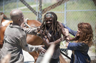 The Walking Dead Season 4 Episode 3 New Photo: Daryl Dixon, Michonne and Bob Stookey in Woods — Where's Tyreese?