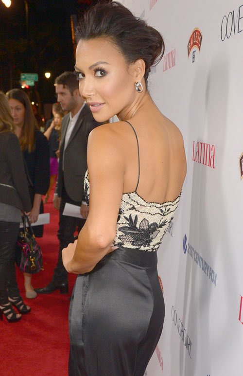 Glee's Naya Rivera Makes the Charts With Her First Single!