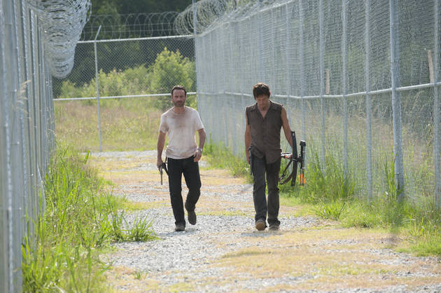 The Walking Dead Season 4 Spoilers: New Character Roundup
