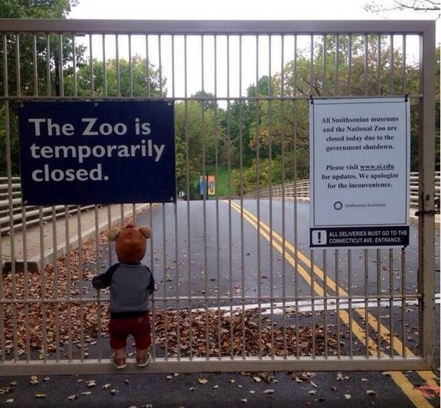 Saddest Picture Ever: Little Boy Can't Visit Zoo Due to Shutdown (PHOTO)
