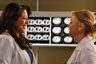 Grey's Anatomy Season 10 Speculation: What Surprises Will We Learn About Calzona's Marriage?
