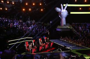Who Was Eliminated and Who Was Saved on The Voice, November 12, 2013?