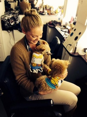 Katherine Heigl Shares Adorable Halloween Photos of Her Dogs on Set