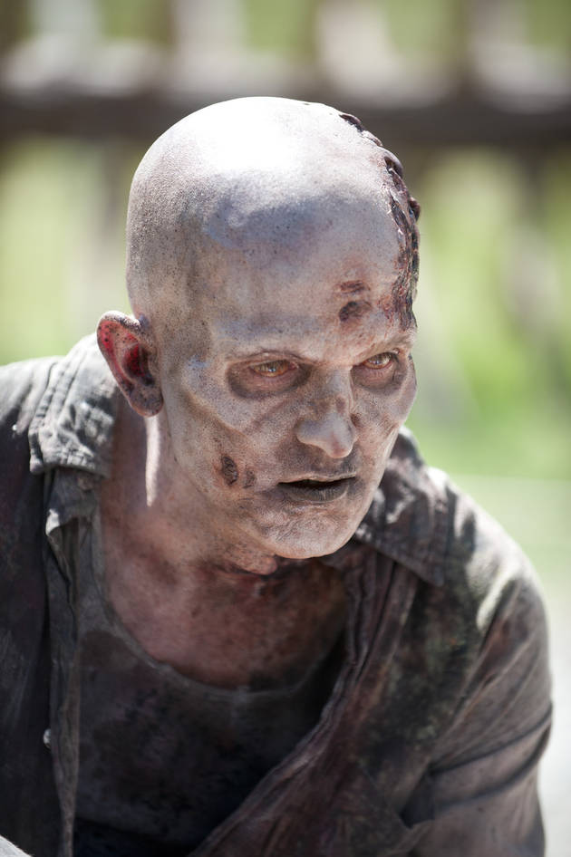 The Walking Dead Spin-Off Reported to Take Place WHEN?