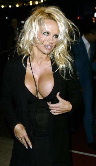 Pamela Anderson Dyes Blond Hair Dark Brown — See Her Brunette 'Do!