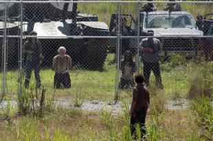 The Walking Dead Season 4: Did Hershel's Leg Seal His Fate?