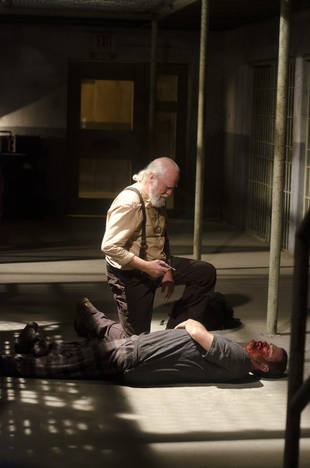 The Walking Dead Season 4: Is Rick Grimes to Blame For Hershel's Death?