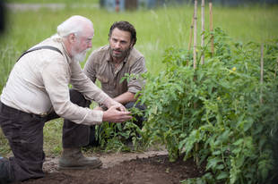 The Walking Dead Season 4 Mid-Season Finale: Why Did Hershel Have to Die?