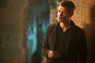 The Originals Speculation: Could Klaus's Werewolf Father Be Alive?