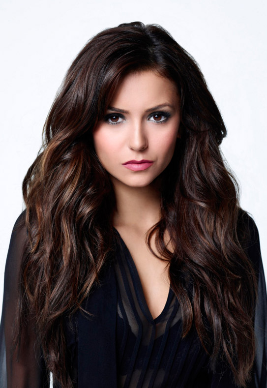 Vampire Diaries Poll: Who Should Elena Be With?