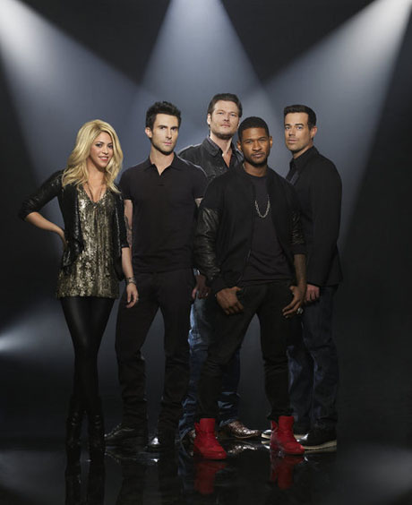 Who Are The Voice Mentors For Season 4?