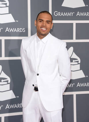 """Chris Brown Gets New Album and Adorable Puppy, Names Both """"X"""""""