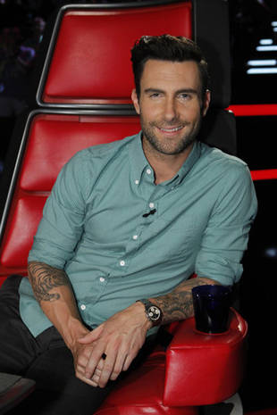 The Voice 2013: Blake Shelton and Adam Levine Dominate Season 4