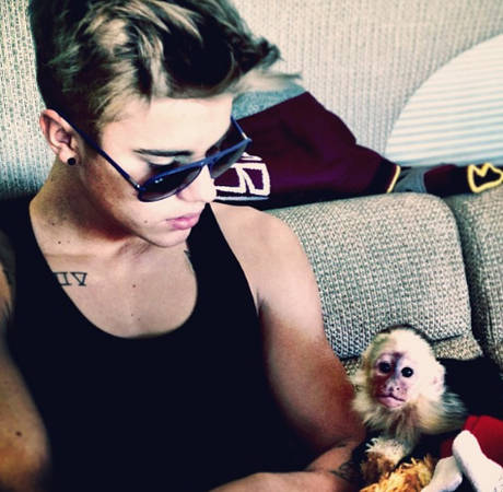Ian Somerhalder Scolds Justin Bieber on Twitter Over Monkey Business
