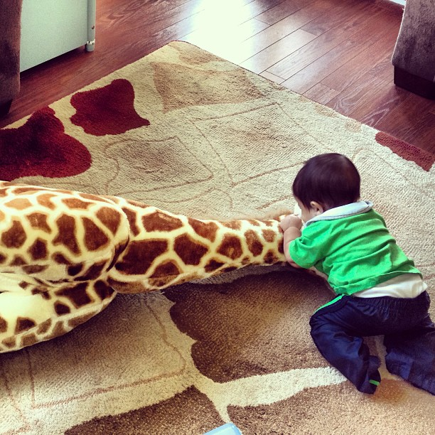 Snooki's Baby, Lorenzo, Wrestled WHAT Crazy Thing? (PHOTO)