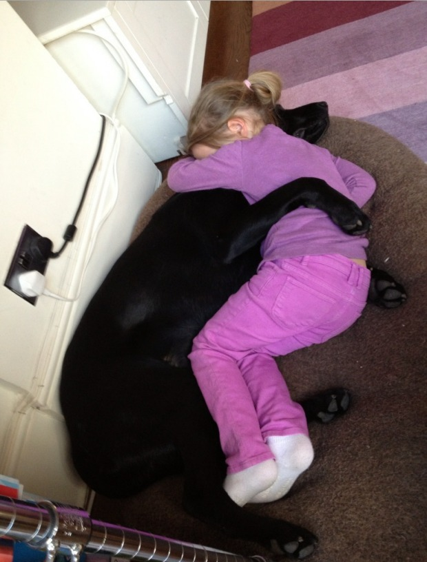 Little Girl Hugs Dog and It's Pretty Much the Most Adorable Photo Ever