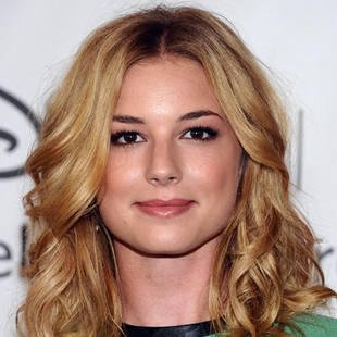 Revenge's Emily VanCamp to Star in Indie Flick The Girl in the Book!