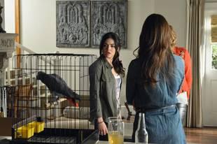 Pretty Little Liars Season 4 Spoilers: Is Aria's New Love Interest Trustworthy?