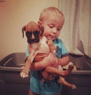 Mackenzie Douthit's Son Gannon Gets a Boxer Puppy! (PHOTO)