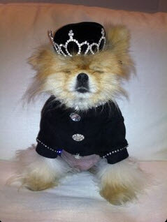"""Lisa Vanderpump Reminds Fans """"Don't Forget Who the Real Prince Is"""" (PHOTO)"""