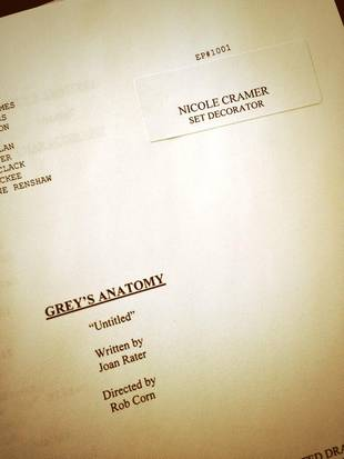 Grey's Anatomy Season 10: First Look at Script and Table Read News!