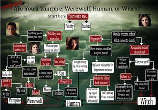 Date quiz com vampire quiz com