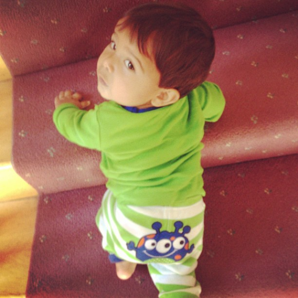 "Snooki's Baby, Lorenzo, Is ""On the Run"" and Climbing Stairs in Cutest Pic Ever!"