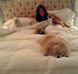 Lisa Vanderpump Cuddles in Bed With Five Dogs — Real Housewives Cute Pic!