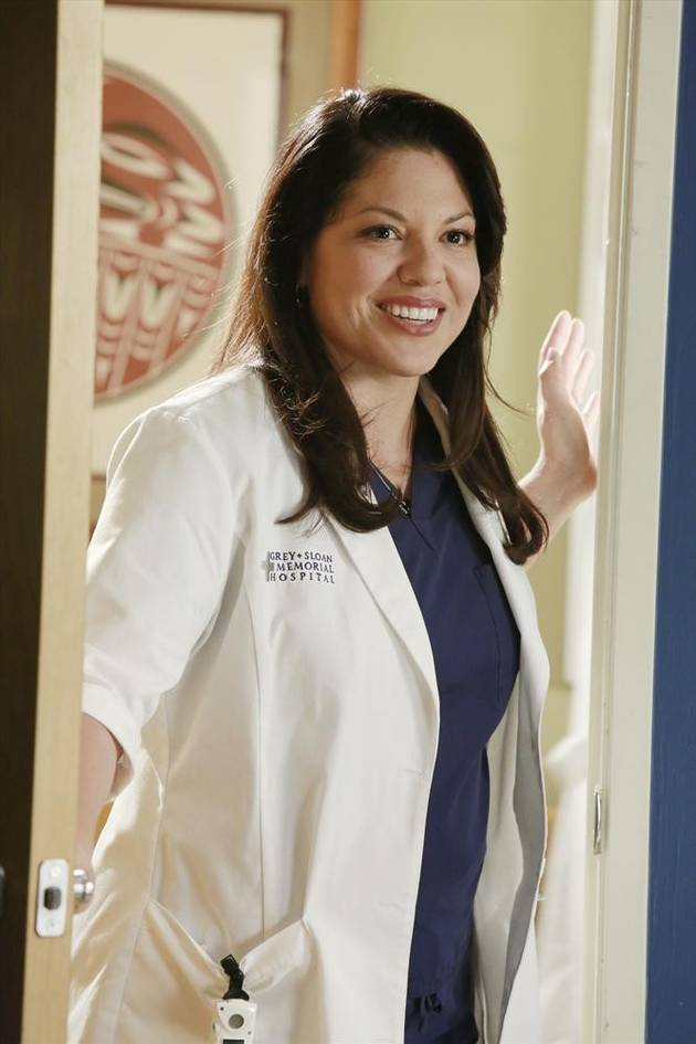 Grey's Anatomy Season 10: 3 Things We Want For Callie Torres