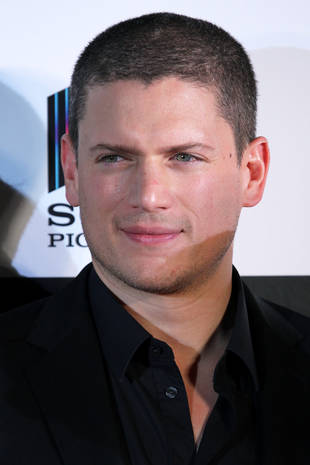 Prison Break's Wentworth Miller Comes Out As Gay, Protests Russian Policy
