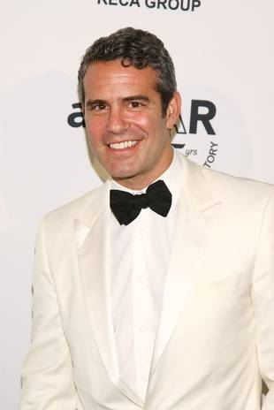 Andy Cohen Opens Up About Rumored Engagement to Hockey Star Sean Avery