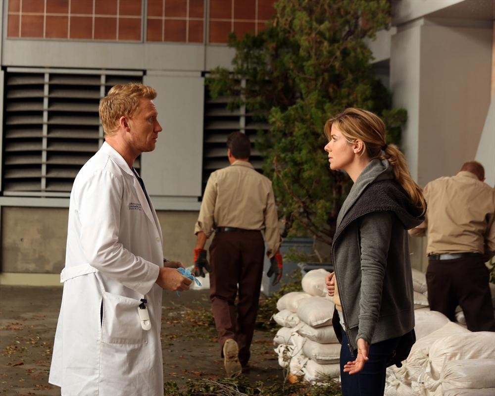 Grey's Anatomy Season 10 Premiere Review: What Did You Think?