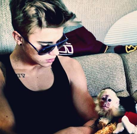 What Happened to Justin Bieber's Monkey? 3 Weird Fan Questions, Answered