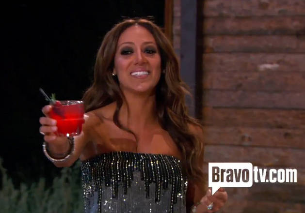 "Melissa Gorga Defends Her Birthday Toast: ""I Wasn't Snubbing Anyone"""