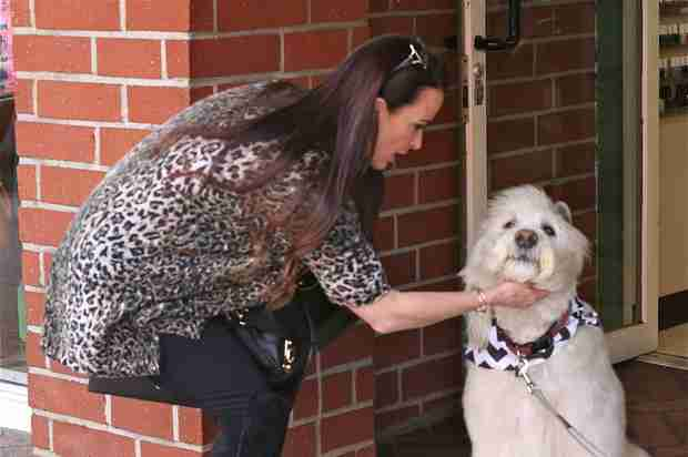 Kyle Richards Pets Adorable Dog Weeks After Family Pet Roxy Passes Away (PHOTOS)