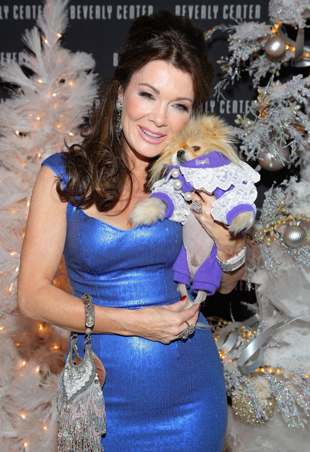 Lisa Vanderpump's Identity Stolen – Thief Uses Her Credit Card Number to Buy WHAT?