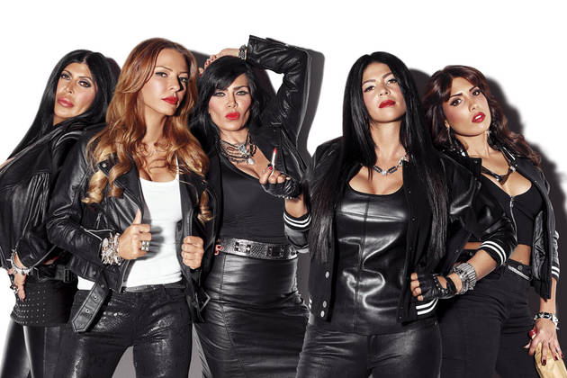 Mob Wives: What Do They Think of the Real Housewives' Fights? (VIDEO)