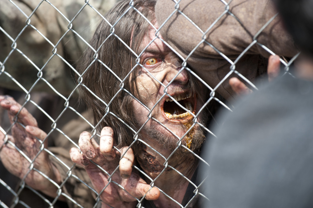 The Walking Dead Season 4 Spoilers: Sanctuary News, New Characters Soon! Rat Answers? Not Soon