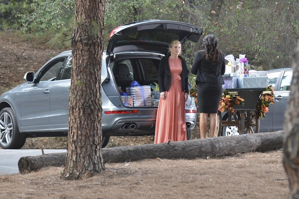 "Grey's Anatomy Season 10 Spring Premiere: ""Intense"" Calzona Encounter Ahead!"