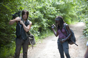 "What Does Danai Gurira Think of ""Dixonne"" Fans Who Want Daryl Dixon to Be With Michonne?"