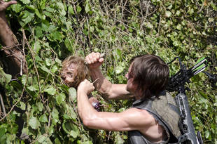The Walking Dead Season 4: Norman Reedus on the Significance of the Snake (VIDEO)
