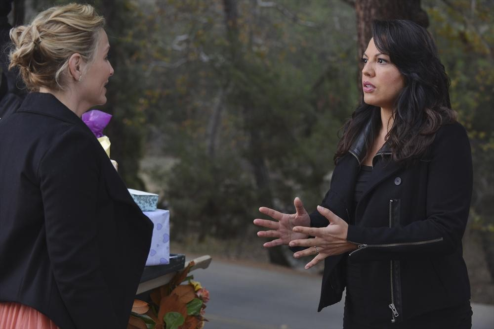 "Grey's Anatomy Recap: Season 10, Episode 13, ""Take It Back"""